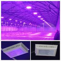 Top 10 hot sell products Vegetative 300w Led Grow Lights Best Green House,High Quality grow lamps