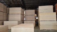 eucalyptus commercial Plywood in China