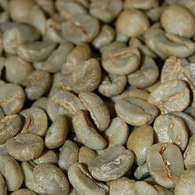 Cost Price Best Price Wholesale Roasted Arabica Coffee Beans