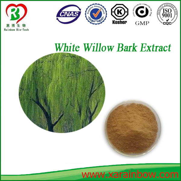 High quality health care white willow bark p.e. white willow park herb extract
