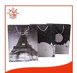 04 paper shopping bag.jpg