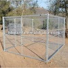 Dog Kennels-Chain Link Fence