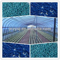 Plastic tunnel film longevity masterbatch for agricultural plastic tunnel film/green house/warm house film masterbatch