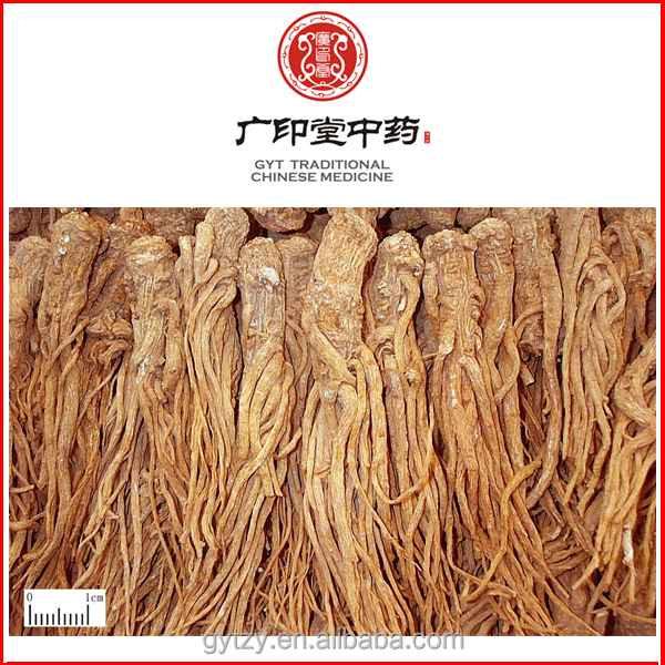Various Specifications Popular Herbal Medicine Chinese Angelica