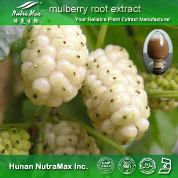 NutraMax Inc.- mulberry root extract (Anthocyandins 5%-25%)