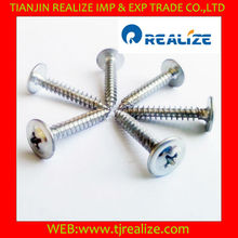low price factory good quality iron C1022 self tapping screw
