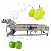 vegetable and fruit washing machine vegetable drying machine vegetable packing machine