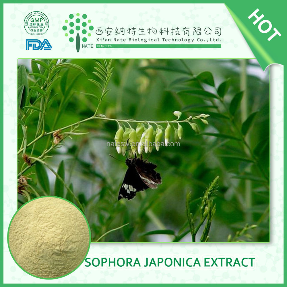 Online shopping sophora japonica extract fruit bud powder quercetin dihydrate 98% free sample