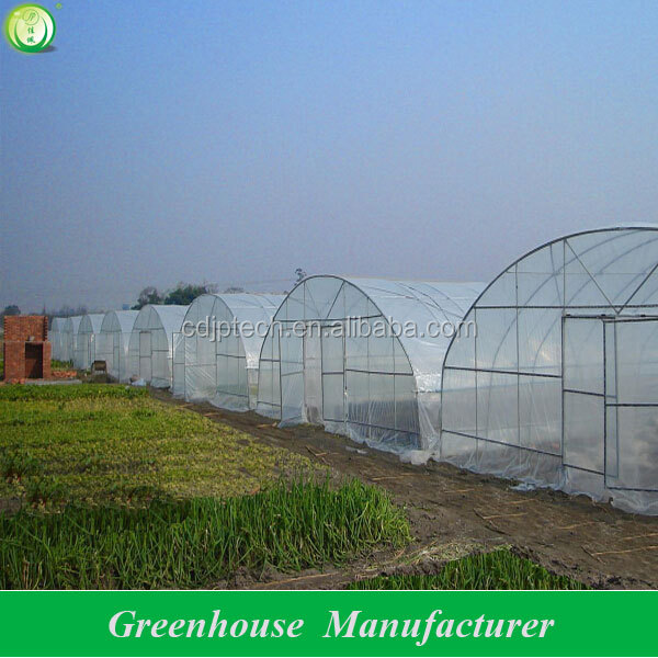 tomato plastic high tunnel greenhouse