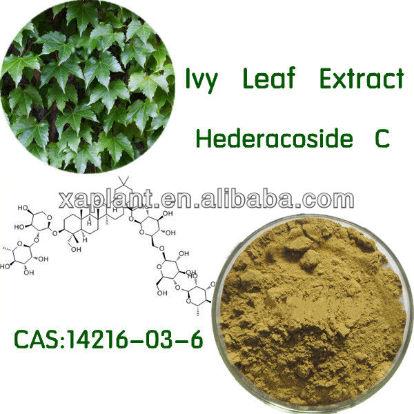 Free Samples Ivy Leaf Extract has the treatment of joint pain and lower back pain
