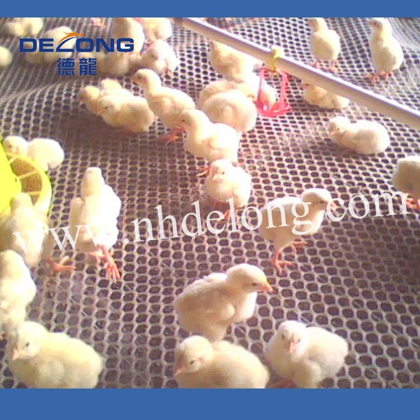 Plastic chicken/duck/rabbit mesh of poultry farming equipment