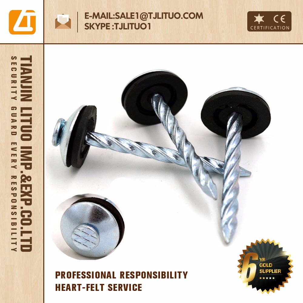 High quality Galvanized roofing nails, twisted shank umbrella head roofing nails