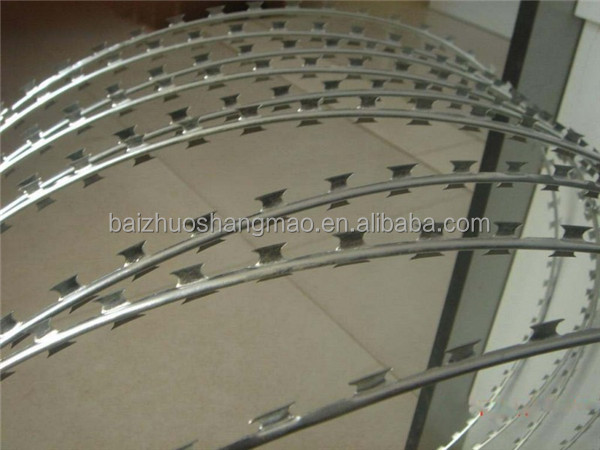 Hot dipped galvanized razor barbed wire factory price/ MOTTO alambre de puas