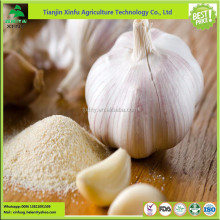 Best price ! bulk black dehydrated garlic power