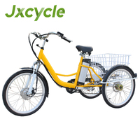 electric basket tricycle adult