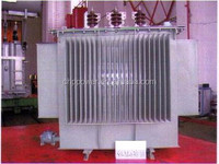 S9 10KV Oil-type transformer 160kva with full accessories