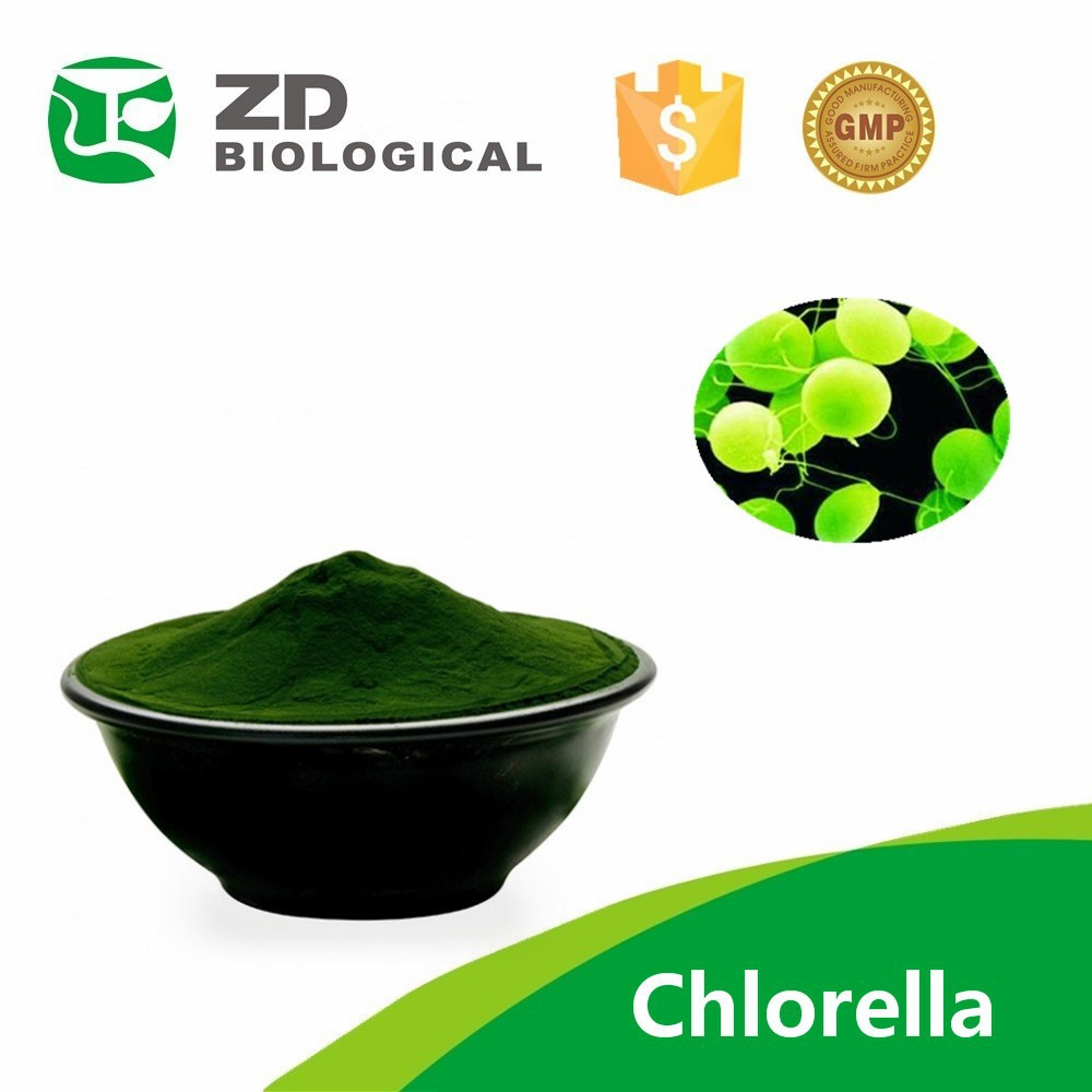 Supply Bulk Algae Chlorella Powder/ bulk spirulina powder/Organic Spirulina