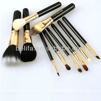 10pcs Fashionable Cosmetic Brush made in China 2013 new product