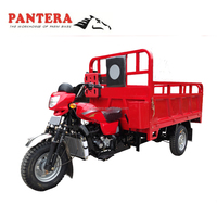 3-wheel MotorcycleTruck 150cc/200cc/250cc/300cc Adult Cargo Motor Tricycle