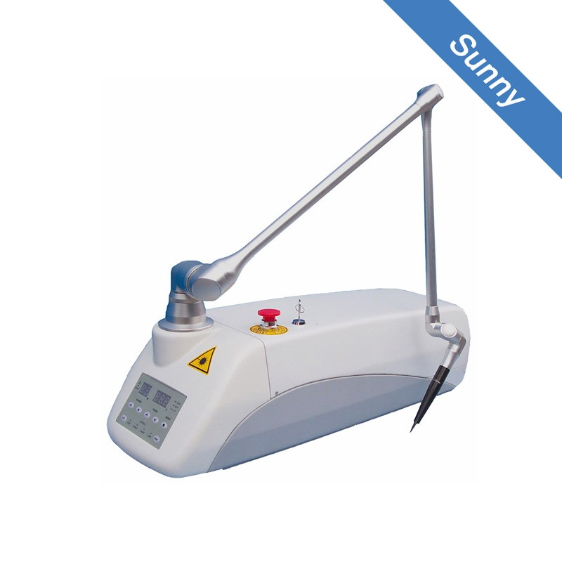 Portable CE Veterinary CO2 Laser for pet