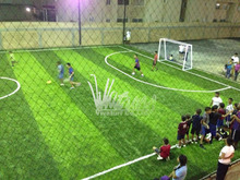 healthy artificial grass used in football court