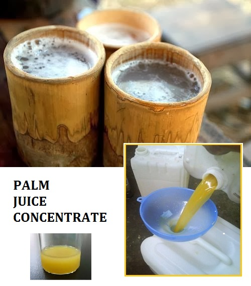 Palm Juice Concentrate