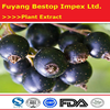 Hei Jia Lun Herbal Products Pure Natural Black Currant Extract