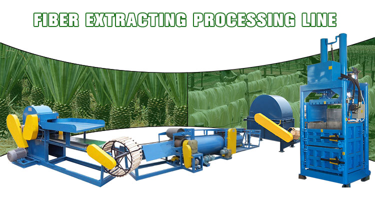 Fresh hemp fibre extracting machine decorticator for different kinds hemps