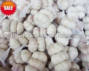Bulk Selling White Garlic Seed