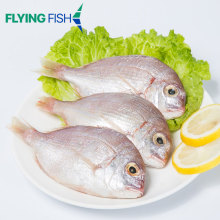 Nemipterus virgatus wholesale fish red sea bream fish