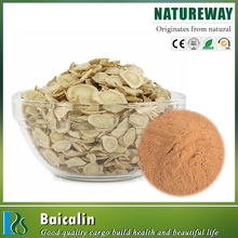 One touch express manufacturer 80% baicalin extract powder CAS NO.21967-41-9