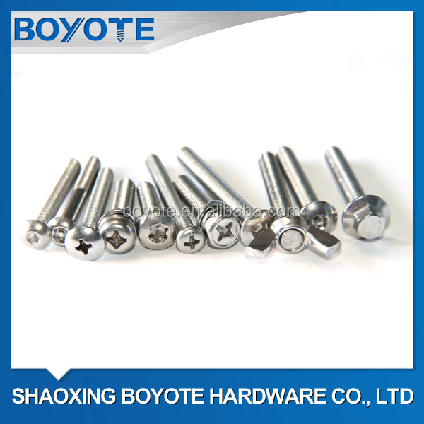 Stainless Steel SS304/SS316 Screws (A2-70/A4-80)