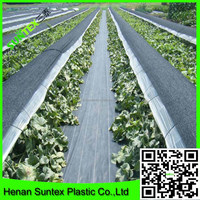 UV stabilised cheap pp woven fabric control weed mat,garden plant protection cover,woven weed control