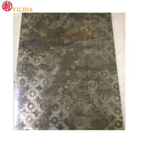 Micro hole SS etched metal mesh