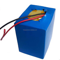 electric vehicle battery pack 48v10ah lifepo4