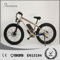 hub motor over center of rear wheel new model electric bicycle fat bike