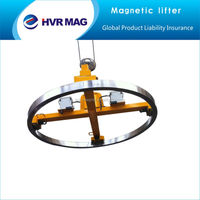 automatic powerful permanent magnetic lifter for sale