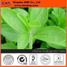 Hot Sale Stevia Leaf Extract,sugar substitute-Stevia Powder