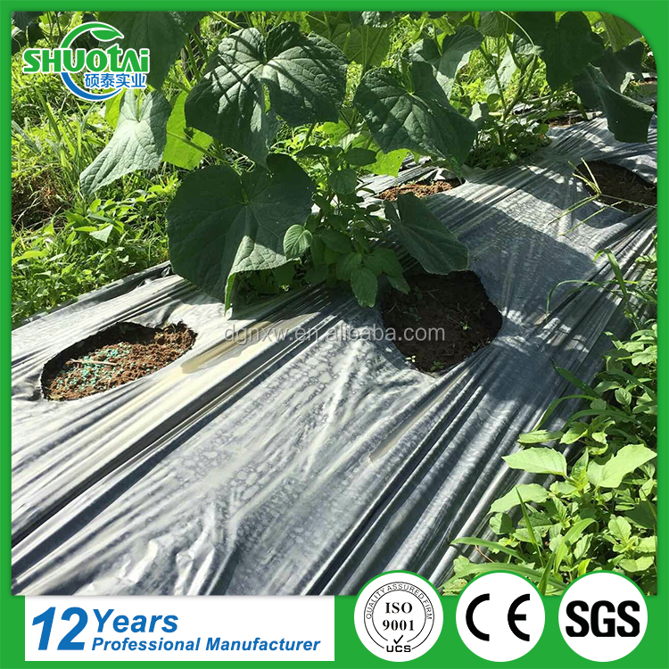 100% PP Woven Agriculture Ground Cover Eco-Friendly Agriculture Compostable Black Plastic Mulch Film