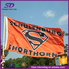 Wholesale Cheap Customized Sports Flag