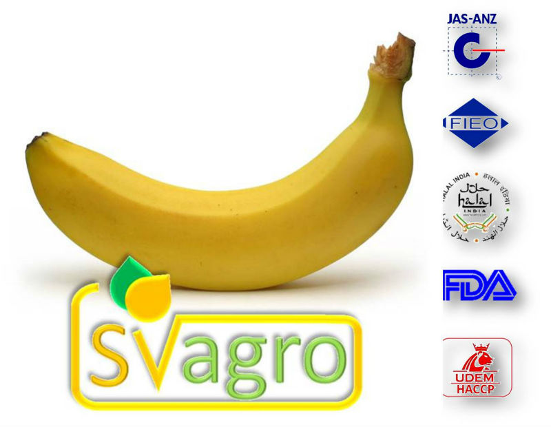 DRIED BANANA POWDER AT BEST PRICE