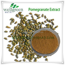 pomegranate seed powder/organic pomegranate powder/pomegranate powder extract