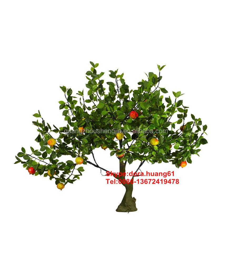 Sjh121431 frutas artificiales rboles bonsai de rboles for Arboles frutales de hoja perenne