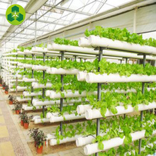 Low price tunnel solar hydroponic greenhouse