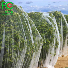 Hot sale high quality insect net manufactures greenhouse insect net and fruit insect nets for farm