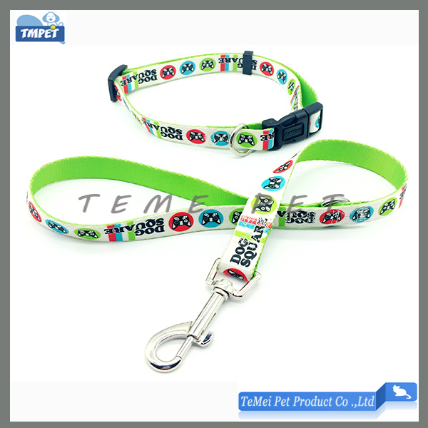 Agility dog training collar Leash Set OEM