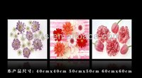 BCP12-0290 High quality decorative group Printed pink Flower Art on canvas