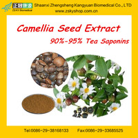 Tea seed saponin powder Tea Saponin