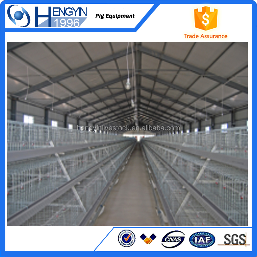 chicken farm equipment/battery cages laying hens/animal drinking system
