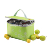 Non Woven Picnic Food Cooler Bag , Wine Bottle Cooler Bag